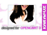 Free Shipping Teaser (Opencart 3)